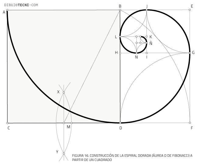Construcción de la espiral áurea a partir de un cuadrado