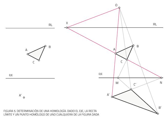 Dado el eje, la recta límite y un punto homólogo de uno cualquiera de la figura dada