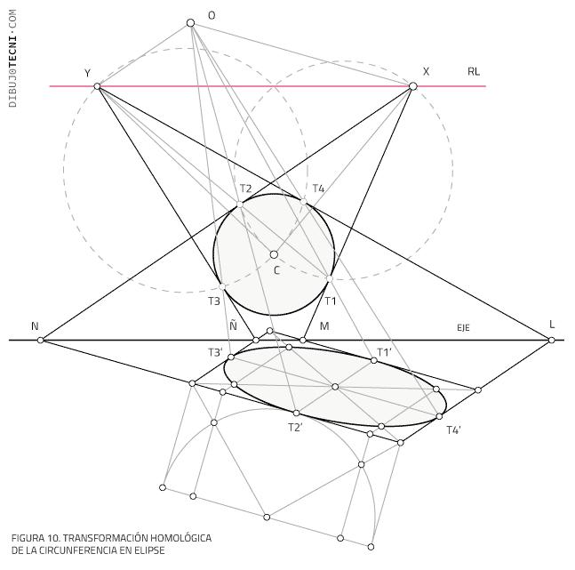 Transformación homológica de la circunferencia en elipse